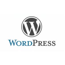 Paket Gila Wordpress Hosting 100 GB