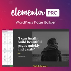 Elementor PRO WordPress Hanya 150 Ribu  ( Full Lisensi )