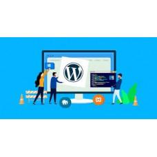 Paket Wordpress Premium ( 1 Template dan 3 Plugin ) Diskon 50 %